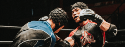 Muay Thai punch