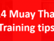 Muay Thai beginner training tips