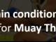 Shin conditioning Muay Thai
