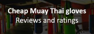 Cheap Muay Thai gloves